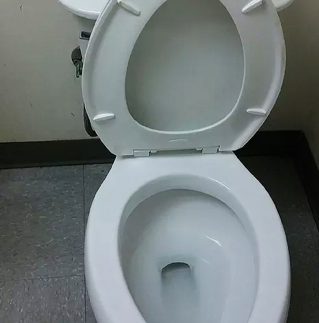 clean-toilet-01