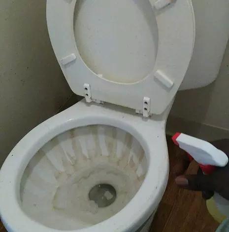 gross-toilet-01